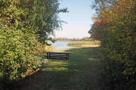 Badestelle Blankenburger See
