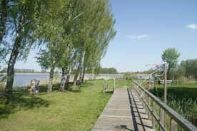 Teichland Linum